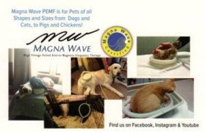 magnawave5-300x193.jpg